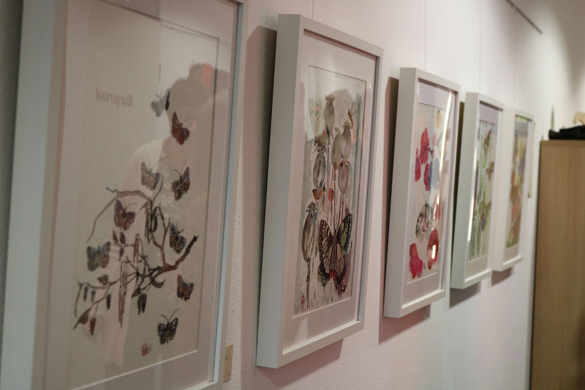 Brigitte Haase - Schmetterlinge